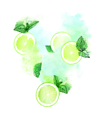 Lime slices with fresh mint for mojito splash on white background. Hand-painted watercolor illustration.