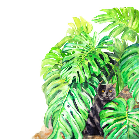 Cat and monstera leaves. Hand-painted watercolor illustration.