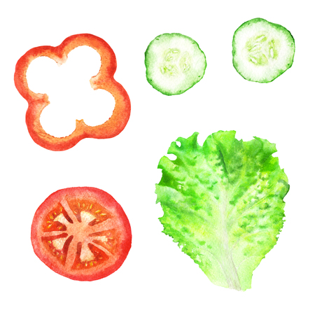 Slices of tomato, paprika, cucumber and leaf of lettuce for sandwich. Watercolor illustration on isolated white background. Zdjęcie Seryjne