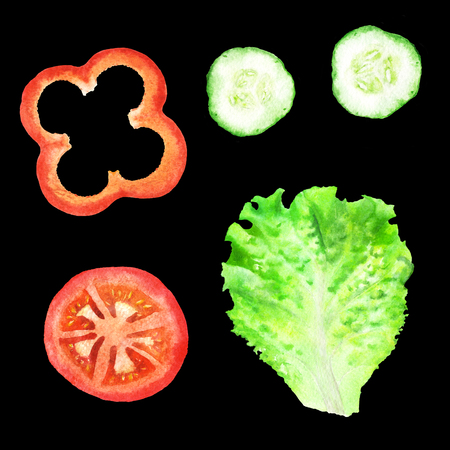 Slices of tomato, paprika, cucumber and leaf of lettuce for sandwich. Watercolor illustration on isolated black background