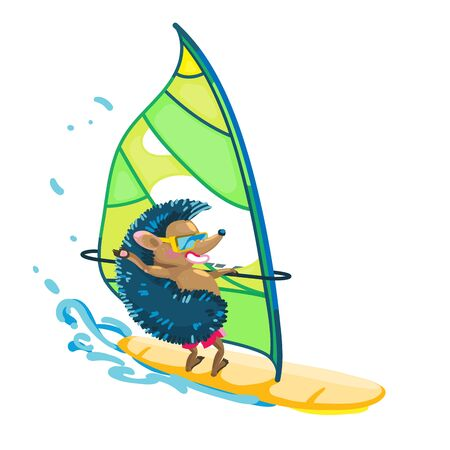 Funny hedgehog on windsurf. Isolated background. Vector illustration.