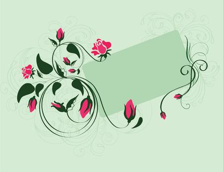 red rose: roses