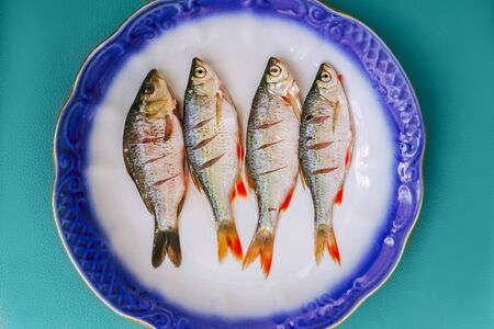 Fresh fishes on plate on green mint background. Top view. Stok Fotoğraf