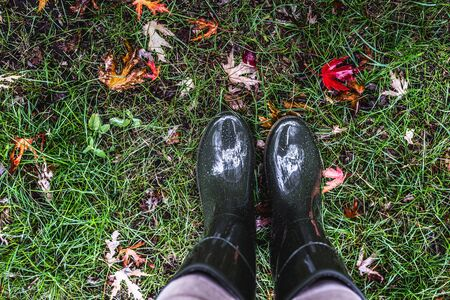 Feet in olive green rubber boots standing on green grass with fallen autumn leaves. Autumn concept.