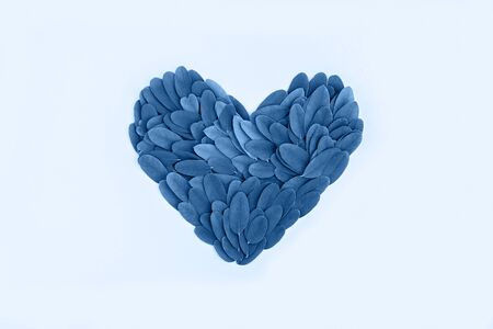Fresh leaves shaped heart and toned blue color on blue pastel background. Creative and moody color of the picture, 2020.