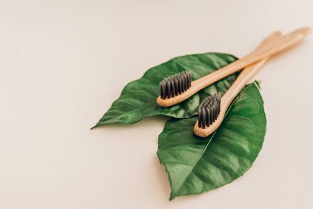 Bamboo natural toothbrushes and fresh leaves on pale background. Zero waste and plastic free concept. Sustainable lifestyle concept.