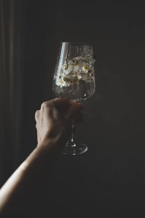 Wineglass with chamomiles flowers and water splashes in hand on dark background. Minimal and creative style. Imagens