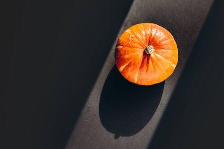 Orange pumpkin with hard shadow on black background. Halloween concept. 版權商用圖片