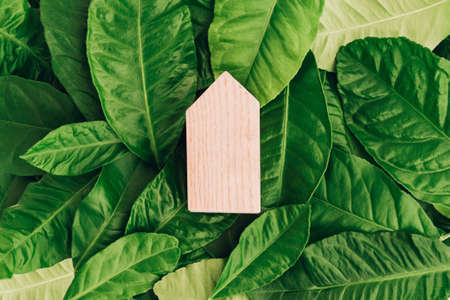 Miniature wooden house on green leaves. Eco-friendly and energy efficient house concept.