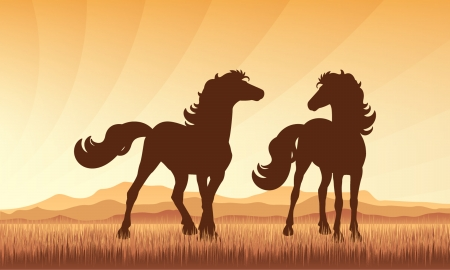 trotter: Horses in field on sunset background vector silhouette illustration.   Illustration