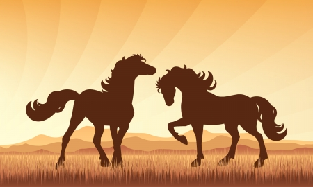 Horses in field on sunset background vector silhouette illustration.  Vector