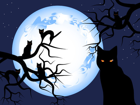 superstition: Halloween. Mystical night. The mysterious moon in the sky. Black cats sit on trees. Illustration