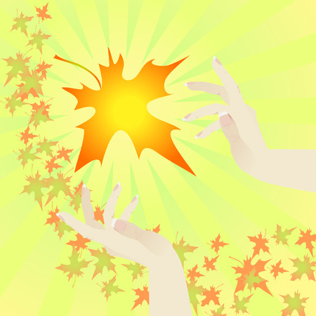 Background. A leaf fall. Beams. Female hands catch a maple leaf. Vector