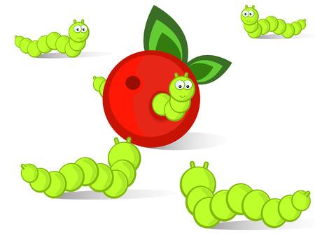 gusanos: Las orugas ridículas se ejecutarán juntos a una manzana.