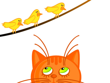 The red a cat looks at three yellow birdies. Isolated.