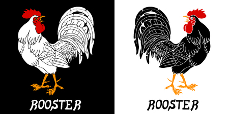 cocky: Fervent black and white roosters. Fiery rooster, chicken a symbol of the Chinese new year 2017 Illustration