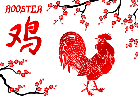 cocky: Fervent red rooster and oriental cherry branch on white background. Fiery rooster, chicken a symbol of the Chinese new year 2017