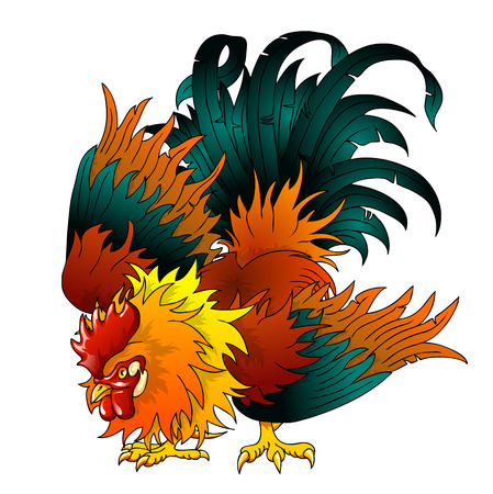 cocky: Fighting black-red rooster on a white background. A symbol of 2017 on east horoscope.