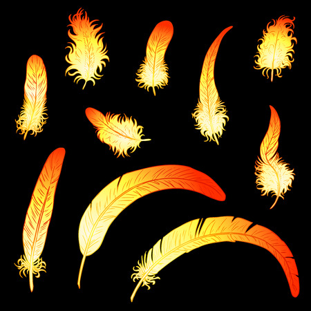 chinese phoenix: Set of 10 fiery feathers of a rooster or phoenix on a black background. A fiery red rooster - a symbol of new year 2017 on east Chinese horoscope.