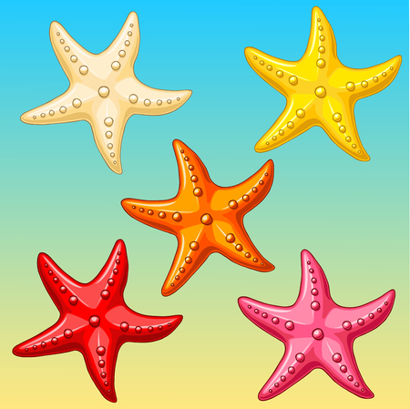 biege: Five multi-colored cheerful cute starfishes on a blue-yellow background. Red, yellow, pink, biege and orange cartoon starfishes. Illustration