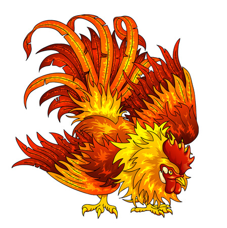 Fighting orange-red rooster on a white background. A symbol of the Chinese new year 2017 according to east calendar.