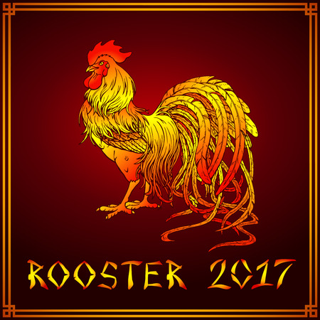 fiery: Vector illustration. A handsome fiery red rooster on a dark red background. A symbol of the Chinese new year 2017 according to east calendar. Festive greeting card.