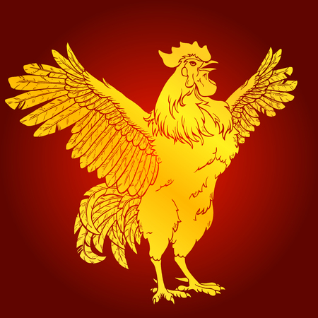 fervent: Vigorous gold rooster on red background. Fiery red rooster symbol of the Chinese new year 2017. Vector illustration. Illustration