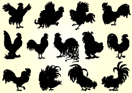 straighten: Set roosters black silhouette on white background. Different characters. Fiery cock, chicken a symbol of the Chinese new year 2017. Vector illustration.