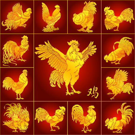 Set roosters gold with different characters on red background and hieroglyph cock. Fiery red chicken symbol of the Chinese new year 2017. Vector illustration. Иллюстрация