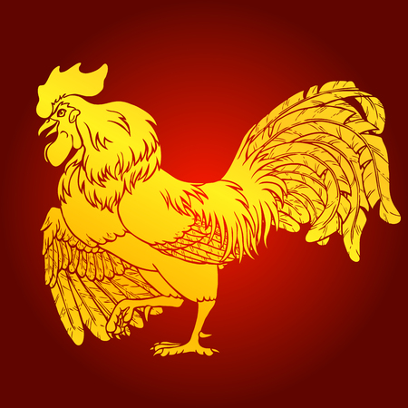 Courting gold rooster . Fiery red rooster symbol of the Chinese new year 2017. Vector illustration.