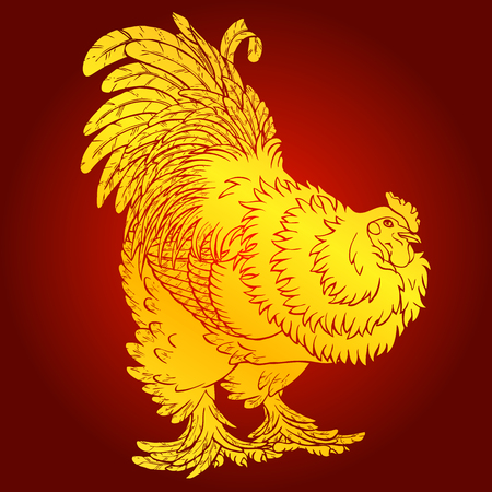 Reliable gold rooster on red background. Fiery red rooster symbol of the Chinese new year 2017. Vector illustration. Иллюстрация