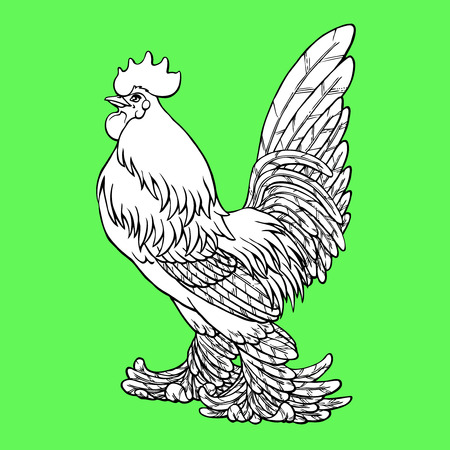 Proud rooster coloring on green background. Decorative chicken monochrome. Coloring page book. A symbol of the Chinese new year 2017 according to east calendar.