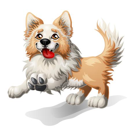 Running puppy of a dog Фото со стока