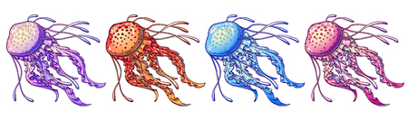Set jellyfish four color with feelers on a white background. Light violet, blue, pink, orange marine animals. Vector illustration isolated.