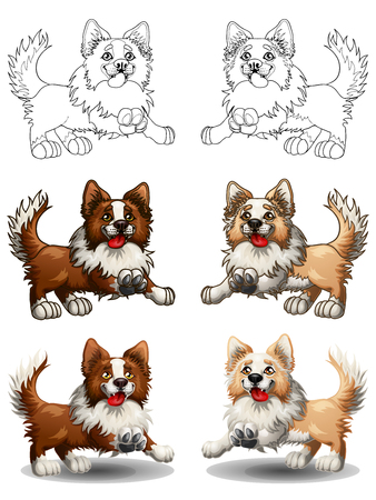 The set of cheerful dogs of a Border Collie, brown and light-red with white, runs forward. The variants of colorfull and contour line. A cartoon vector illustration isolated on white. Иллюстрация