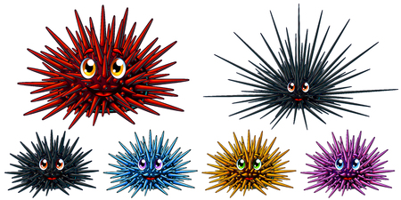 Set of six cartoon sea hedgehogs or urchin with the person of blue, red, yellow, pink and black colors. A vector illustration of marine animals separately on a white background with.