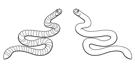 Sea serpent colorful on white Фото со стока - 97871487