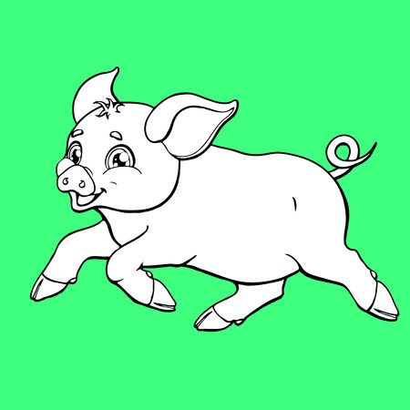 The running pig contour on green background