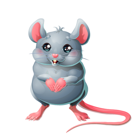 The cute grey mouse on white background