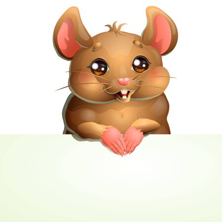 Cute brown mouse and banner on white