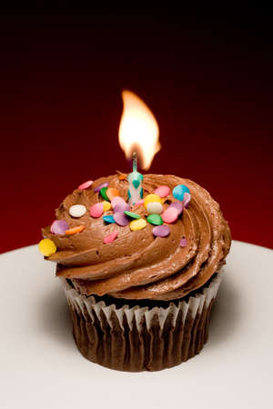 luscious: Chocolate birthday cupcake with chocolate frosting and sprinkles starting to be blown out.