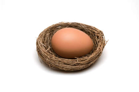nestegg: A nestegg in a nest on white background. Stock Photo