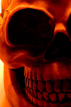 nightmarish: Halloween skull in orange light.