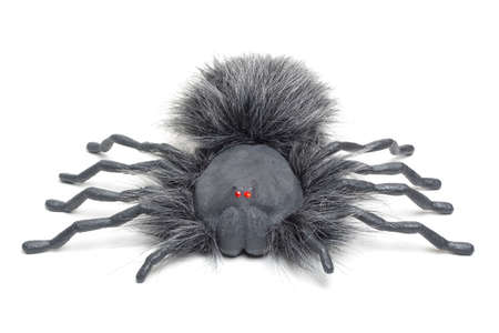 samhain:  spider with glowing red eyes isolated on a white background.