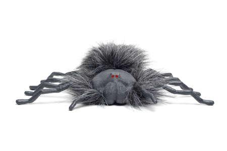 samhain: ara�a con brillantes ojos rojos aislados sobre un fondo blanco.