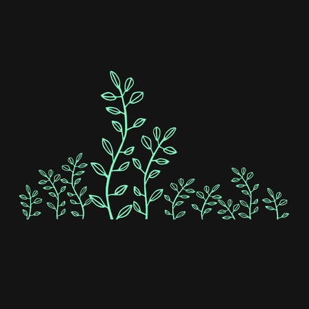 vector illustration sprouts green foliage drawing