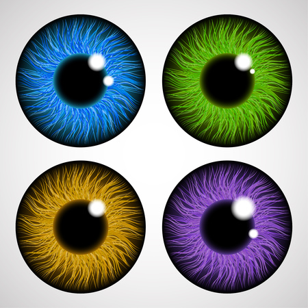 Iris of the human eye. Isolated on light background. Various colored eye lenses. Realistic vector illustration.