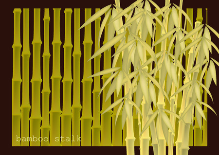 Abstract background of bamboo trees. Bamboo stalks. Vector illustration of tropical plants for your design. Ilustrace