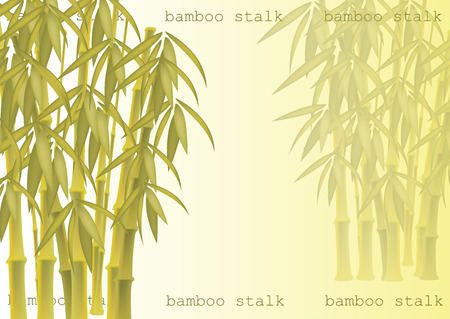 Abstract background of bamboo trees. Bamboo stalks. Vector illustration of tropical plants for your design. 向量圖像