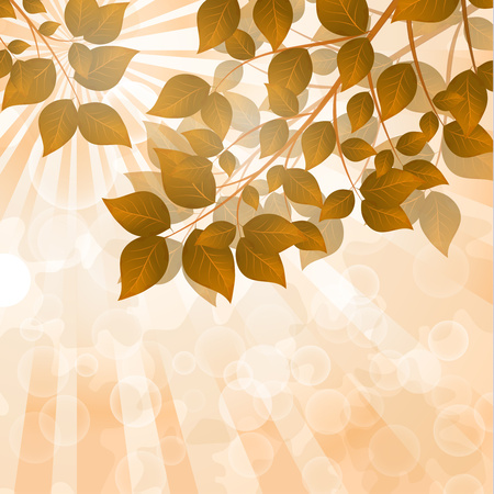 Autumn trees with yellow, golden, red leaves. Sun rays, glare. Autumn landscape. - Vector graphics